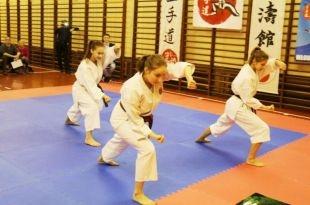 X Mikołajkowy Turniej Karate